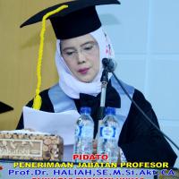 Prof. Dr. Haliah, SE., M.Si., Ak., CA -